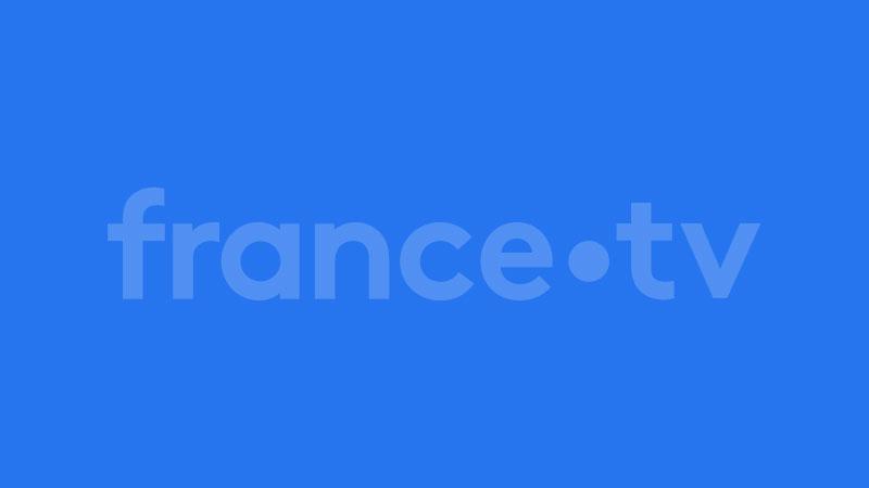 France 2 émission médecine chinoise